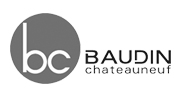 partenaire baudin chateauneuf
